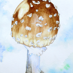 Watercolor-painting-Cleft-foot-Amanita-mushroom